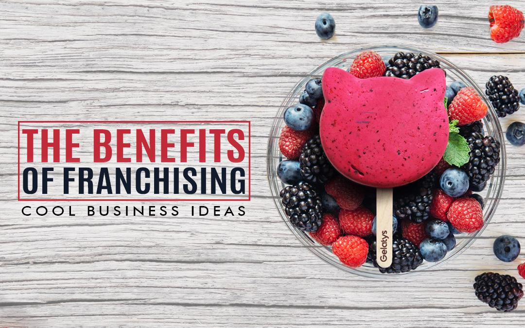 THE BENEFITS OF FRANCHISING COOL BUSINESS IDEAS